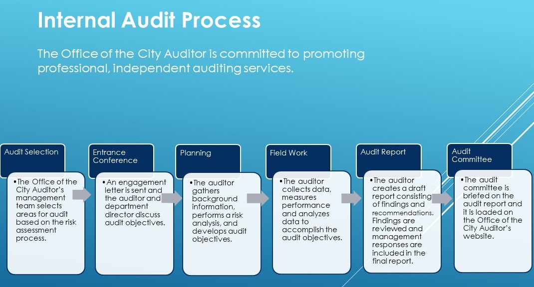 Audit Process Infographic